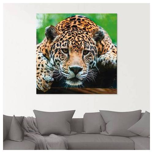 Artland print op glas Zuid-Amerikaanse jaguar (1 stuk)  - 33.99 - bruin