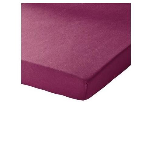 Schlafgut Hoeslaken  - 19.99 - paars - Size: ca. 120-130/200 cm, Hoeslaken;ca. 140-160/200 cm, Hoeslaken;ca. 180-200/200 cm, Hoeslaken;ca. 90-100/200 cm, Hoeslaken