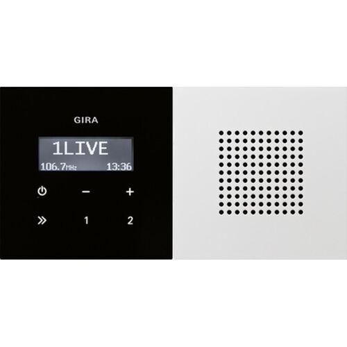 Gira F100 - Radio 2280112 Alpinwit