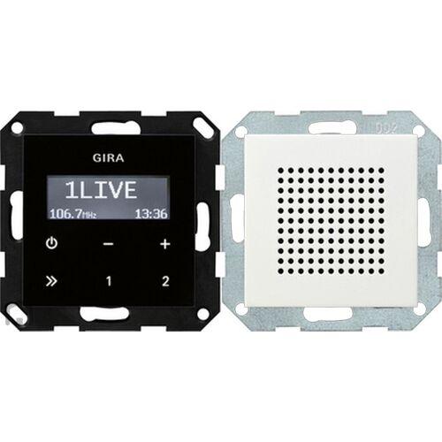 Gira Systeem 55 - Radio 228027 Alpinwit mat