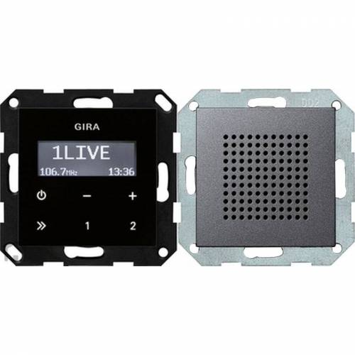 Gira Systeem 55 - Radio 228028 Antraciet