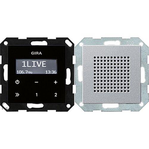 Gira Systeem 55 - Radio 228026 Aluminium