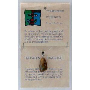 Steengoed Sterrenbeeldsteen hanger tweelingen 1st