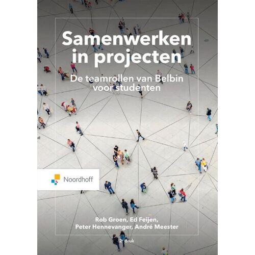 Samenwerken in projecten. - André Meester (ISBN: 9789001749828)