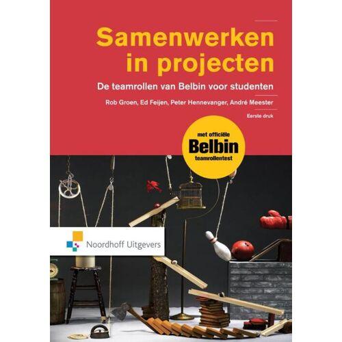 Samenwerken in projecten - André Meester (ISBN: 9789001850180)