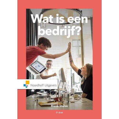 Wat is een bedrijf? - Rienk Stuive (ISBN: 9789001898915)