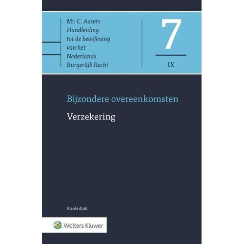 Verzekering - Mr. F.R. Salomons (ISBN: 9789013149937)