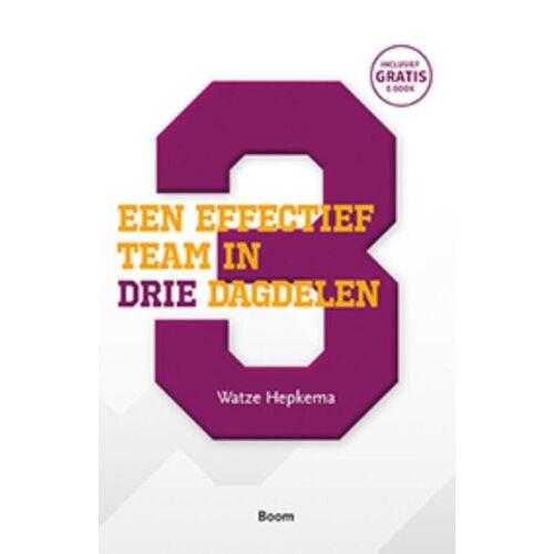 Een effectief team in drie dagdelen - Watze Hepkema (ISBN: 9789024404155)