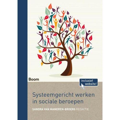 Systeemgericht werken in sociale beroepen - Sandra van Mameren-Broers (ISBN: 9789024407873)