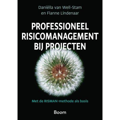 Professioneel risicomanagement bij projecten - Daniella van Well-Stam, Fianne Lindenaar (ISBN: 9789024438990)