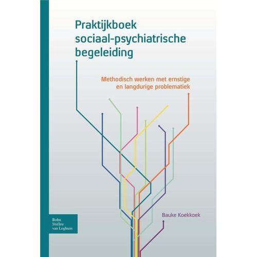 Praktijkboek sociaal-psychiatrische begeleiding - Bauke Koekkoek (ISBN: 9789031390533)
