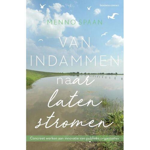 Van indammen naar laten stromen - Menno Spaan (ISBN: 9789047011507)