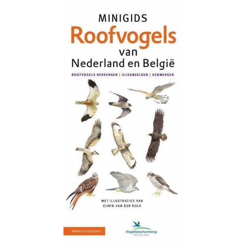 Set Minigids Roofvogels van Nederland en Belgie - Jip Louwe Kooijmans (ISBN: 9789050117777)