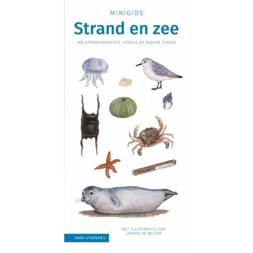 Set Minigids Strand en Zee - Jasper de Ruiter (ISBN: 9789050117883)