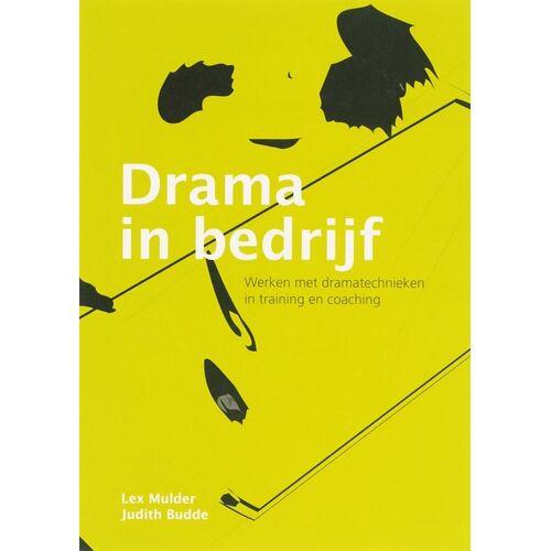 Drama in bedrijf - Lex Mulder (ISBN: 9789058710871)