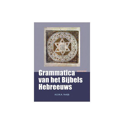 Grammatica van het Bijbels Hebreeuws - A.E.M.A. Vrolijk (ISBN: 9789058819727)