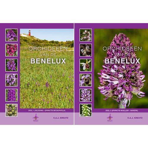 Orchideeën van de Benelux - C.A.J. Kreutz (ISBN: 9789080662681)