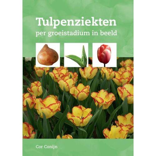 Tulpenziekten - Cor Conijn (ISBN: 9789087403003)