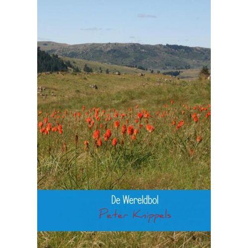 De wereldbol - Peter Knippels (ISBN: 9789402132816)