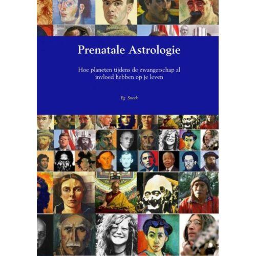 Prenatale Astrologie - Eg Sneek (ISBN: 9789402185706)