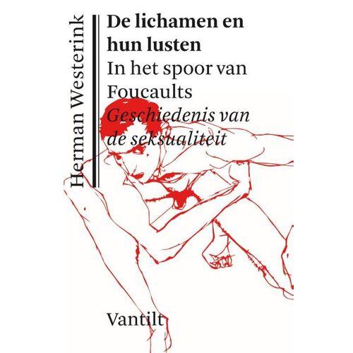 De lichamen en hun lusten - Herman Westerink (ISBN: 9789460044243)