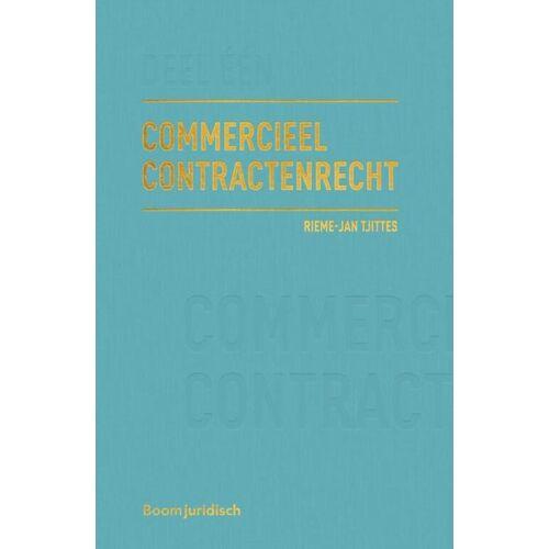 Commercieel Contractenrecht - Rieme-Jan Tjittes (ISBN: 9789462905313)