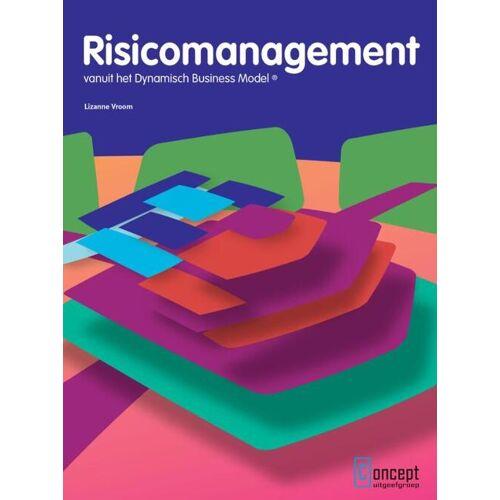 Risicomanagement - Lizanne Vroom (ISBN: 9789491743245)