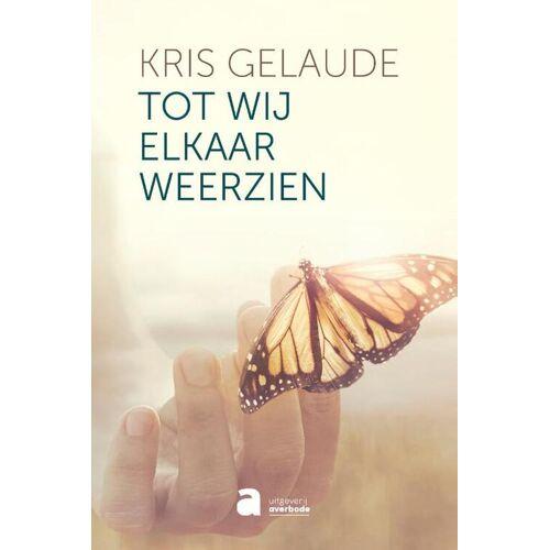 Tot wij elkaar weerzien - Kris Gelaude (ISBN: 9782808125482)