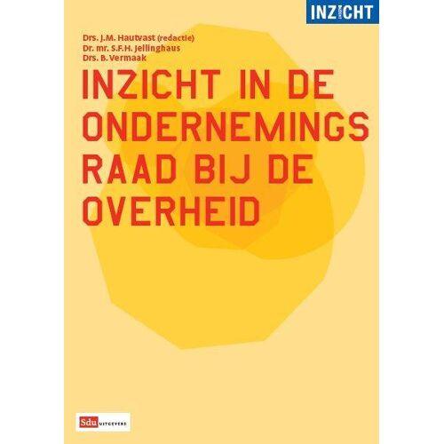 Inzicht in de ondernemingsraad bij de overheid - B. Vermaak, J.M. Hautvast, S.F.H. Jellinghaus (ISBN: 9789012390828)