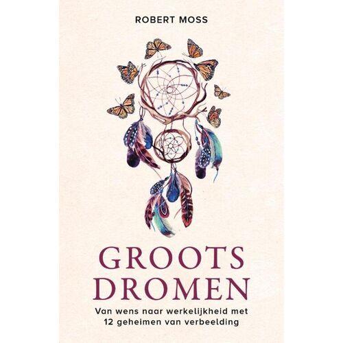 Groots dromen - Robert Moss (ISBN: 9789020217834)