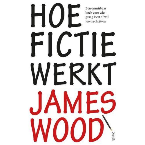 Hoe fictie werkt - James Wood (ISBN: 9789021442624)