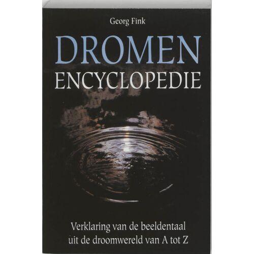 Dromenenyclopedie - Georg Fink (ISBN: 9789038908113)