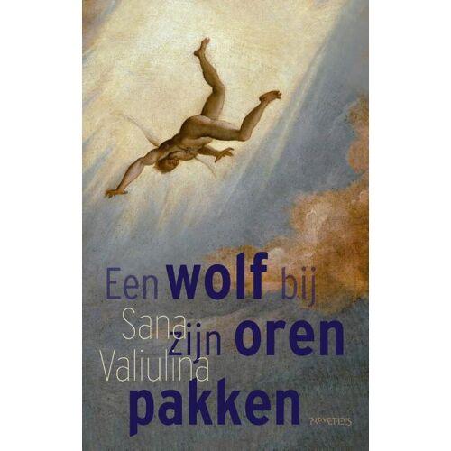 Een wolf bij zijn oren pakken - Sana Valiulina (ISBN: 9789044639483)