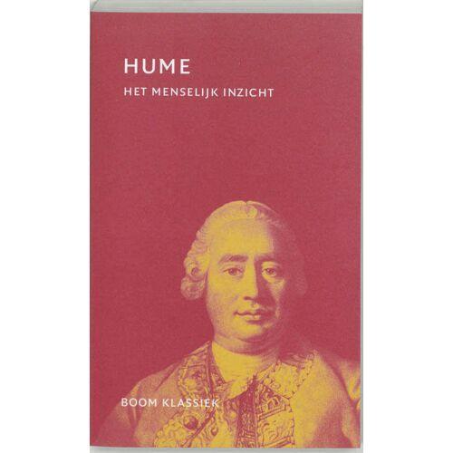 Het menselijk inzicht - D. Hume (ISBN: 9789053527832)