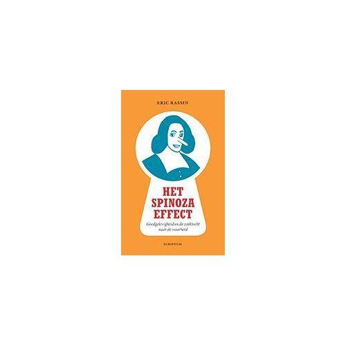 Het Spinoza-effect - Eric Rassin (ISBN: 9789055947966)