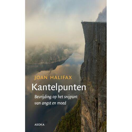 Kantelpunten - Joan Halifax (ISBN: 9789056703974)