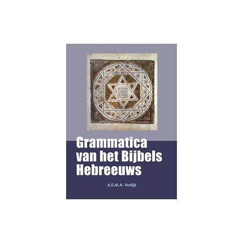 Grammatica van het Bijbels Hebreeuws - A.E.M.A. Vrolijk (ISBN: 9789058819642)