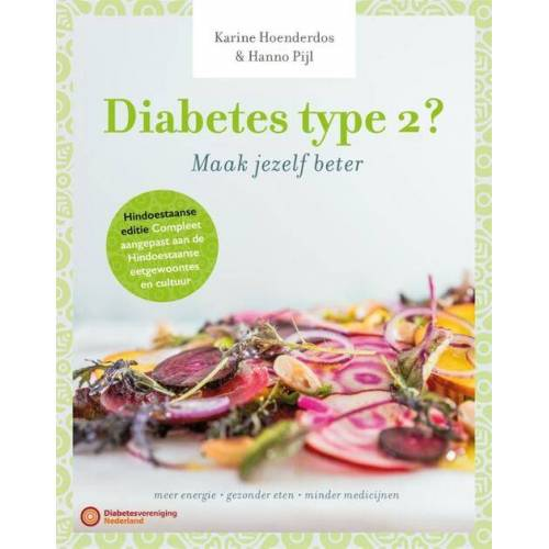 Diabetes type 2 - Hanno Pijl, Karine Hoenderdos (ISBN: 9789059564053)