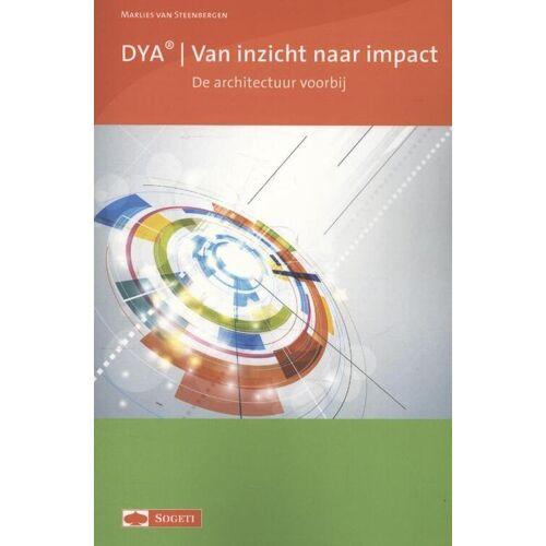DYA van inzicht naar impact - Marlies van Steenbergen (ISBN: 9789075414660)