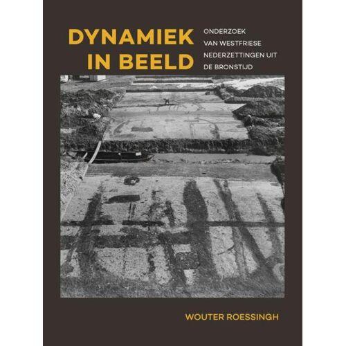 Dynamiek in beeld - Wouter Roessingh (ISBN: 9789088907395)