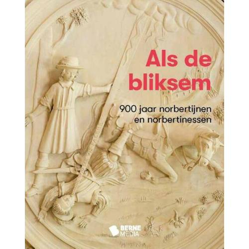 Als de bliksem - (ISBN: 9789089724267)