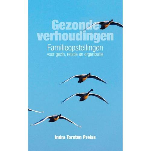 Gezonde verhoudingen - Indra Torsten Preiss (ISBN: 9789400504516)