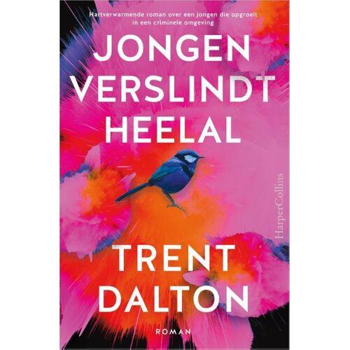 Jongen verslindt heelal - Trent Dalton (ISBN: 9789402702637)