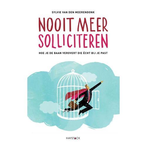 Nooit meer solliciteren - Sylvie van den Meerendonk (ISBN: 9789461261717)