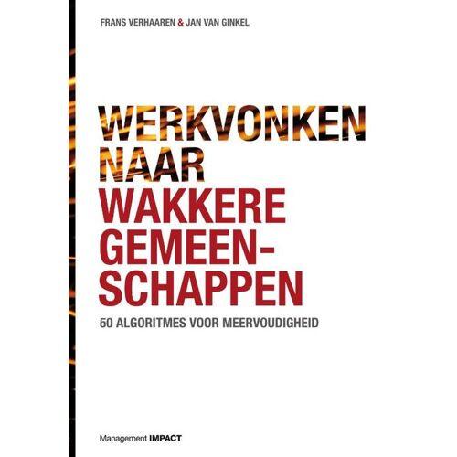 Werkvonken naar wakkere gemeenschappen - Frans Verhaaren, Jan van Ginkel (ISBN: 9789462762176)
