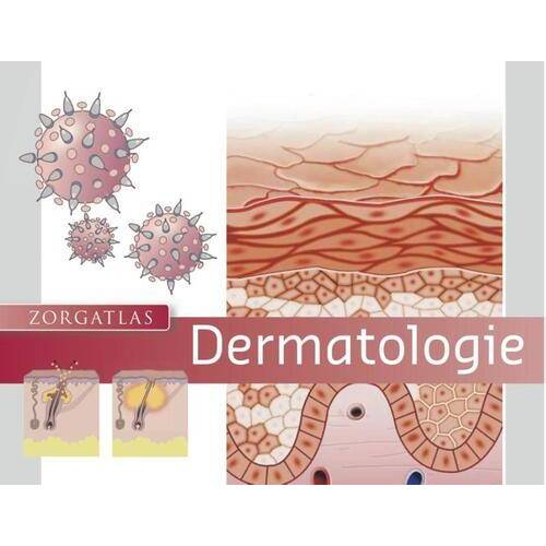 Dermatologie - R.C. Beljaards (ISBN: 9789491984099)