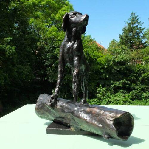 Petsonline Bronzen urn voor hond