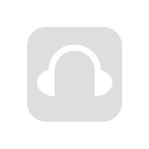 Alpine Partyplug zwart