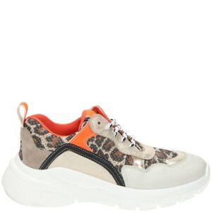 Clic Sneaker Meisjes Bruin/Oranje  - Bruin/Oranje - Size: 39