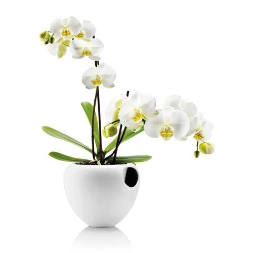 Eva Solo orchideeënpot wit